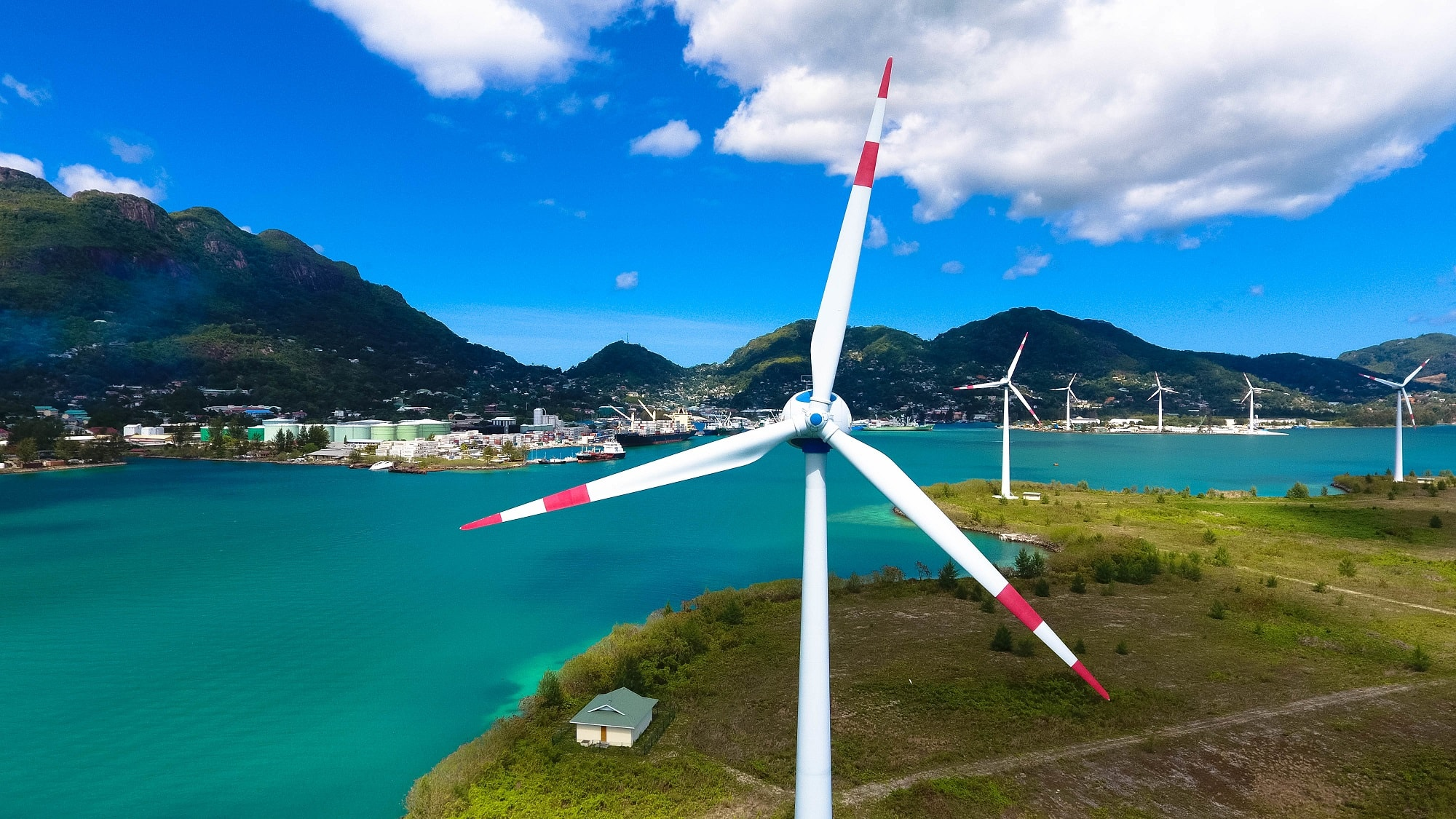 Wind turbines near the water. Connect with clean tech across the world.